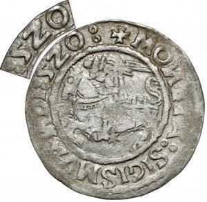 Zygmunt I Stary, Półgrosz Wilno 1520 - skrócona data 5Z0 - rzadki