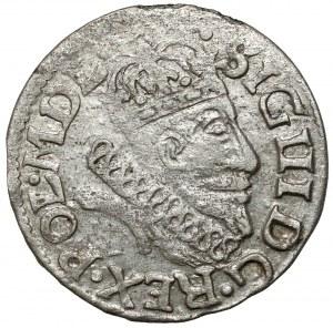 Zygmunt III Waza, Grosz Wilno 1607