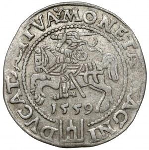 Zygmunt II August, Grosz na stopę litewską 1559, Wilno