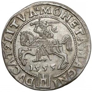 Zygmunt II August, Grosz na stopę litewską 1555, Wilno - piękny