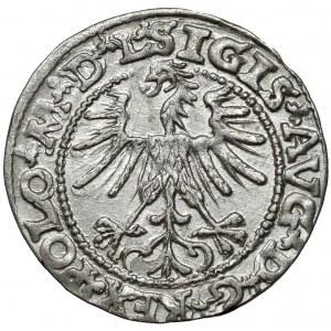 Zygmunt II August, Półgrosz Wilno 1563 - mała Pogoń - M*D*L*