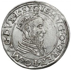 Zygmunt II August, Czworak Wilno 1566 - L/LITV - mała Pogoń