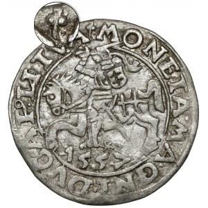 Zygmunt II August, Półgrosz Wilno 1557 - Behm - koniczyny - rzadki