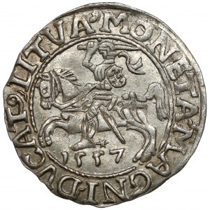 Zygmunt II August, Półgrosz Wilno 1557