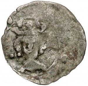 Kazimierz III Wielki, Denar Kraków bez daty - punkty przy portrecie