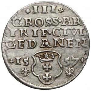 Zygmunt II August, Trojak Gdańsk 1557 - lilijki pod datą - rzadki