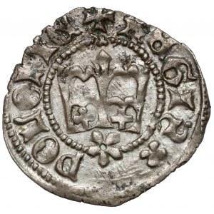 Kazimierz IV Jagiellończyk, Półgrosz Kraków - litera S odwrócona