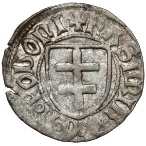 Kazimierz IV Jagiellończyk, Szeląg Toruń