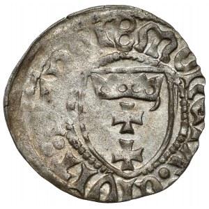 Kazimierz IV Jagiellończyk, Szeląg Gdańsk - 8 / gwiazda