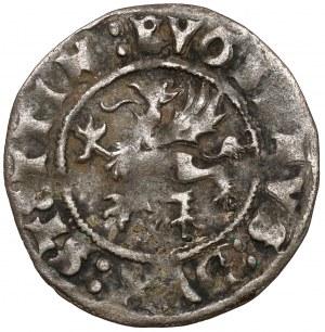 Pomorze, Bogusław X, Wit Szczecin 1518