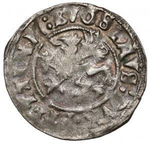 Pomorze, Bogusław X, Wit Szczecin 1520