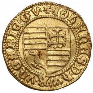 Węgry, János Hunyady (regent Królestwa Węgier) Goldgulden bez daty (1446-1447) Nagybanya