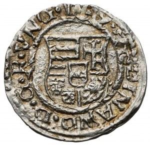 Hungary, Ferdinand I (1526-1564) Denar, Kremnica
