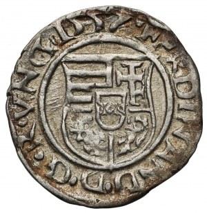 Hungary, Ferdinand I (1526-1564) Denar 1557 KB