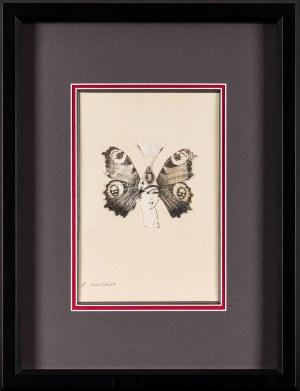 Roman CIEŚLEWICZ, Kobieta - motyl