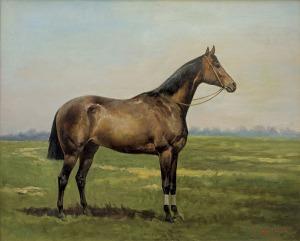 Ajdukiewicz Tadeusz, GNIADY KOŃ, 1886