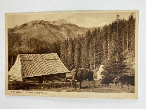 Karta pocztowa Zakopane. Hala Olczyska.