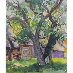 Anna Maślakiewicz-Brzozowska (1912-1986), Drzewo, 1949 r.