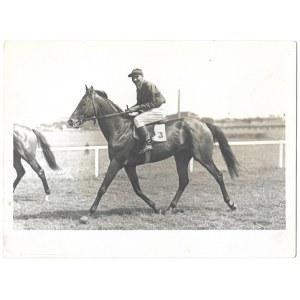 [KONIE - na torze wyścigów konnych - fotografie sytuacyjne]. [1943/1944]. Zestaw 4 fotografii form....