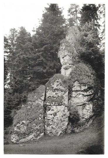 [KRAKÓW i okolice - Brama Krakowska w Ojcowskim Parku Narodowym - fotografia widokowa]. l. 30 XX w....