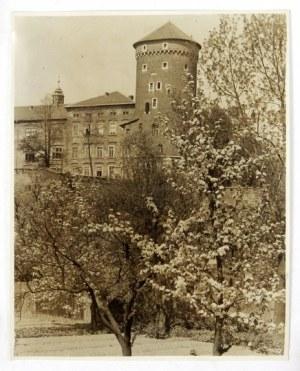 [KRAKÓW - widok na fragment Wawelu od strony południowo-zachodniej w porze wiosennej - fotografia widokowa]. [l. 20/....