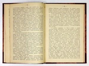 SIEMIRADZKI Józef - Za morze! Szkice z wycieczki do Brazylii. Lwów 1894. I Związkowa Drukarnia. 8, s. [2], 100....