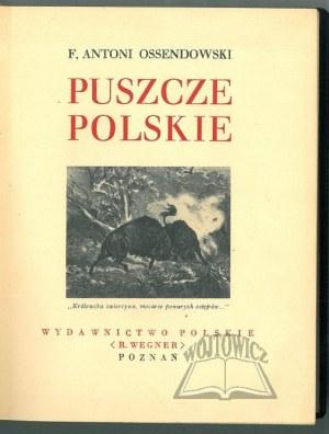 OSSENDOWSKI F. Antoni, Puszcze Polskie.