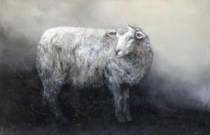 Klaudia Choma, Owca, 2020