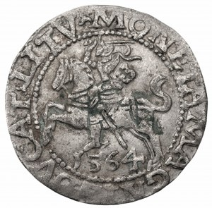 Zygmunt II August (1545-1572) - półgrosz 1564 LITV