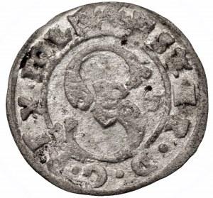 Stefan Batory (1576-1586) - Szeląg 1584