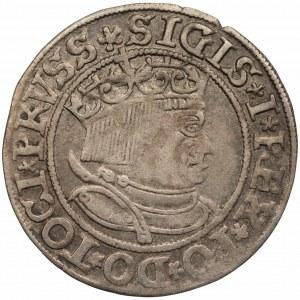 Zygmunt I Stary (1506-1548) - Grosz Toruń 1533 - PRVSS/PRVSSIE