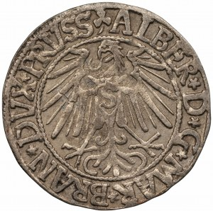 PRUSY - Albrecht Hohenzollern (1525-1568) Grosz Królewiec 1540