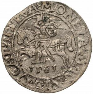 Zygmunt II August (1545-1572) Półgrosz Wilno 1565 - L/LITVA
