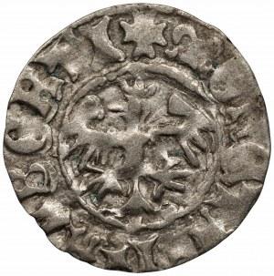 Jan I Olbracht (1492-1501) - Półgrosz Kraków