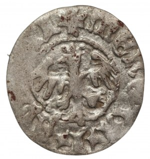 Jan I Olbracht 1492-1501 - Półgrosz koronny Kraków