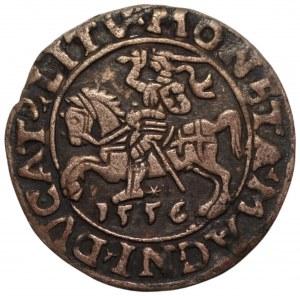 Zygmunt II August (1545-1572) - półgrosz 1556