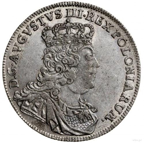 Tymf, 1753, mennica Lipsk; młodzieńczy typ popiersia, z...