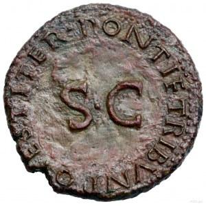 As, 22–23 ne, Rzym; Aw: Głowa Druzusa w lewo, DRVSVS CA...