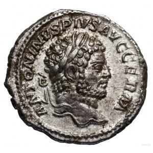 Denar, 214, Rzym; Aw: Głowa cesarza w wieńcu laurowym w...