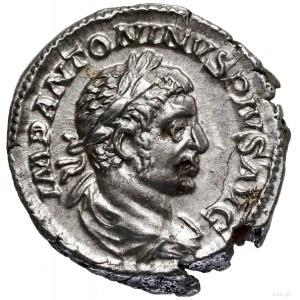 Denar, 221, Rzym; Aw: Popiersie cesarza w wieńcu laurow...