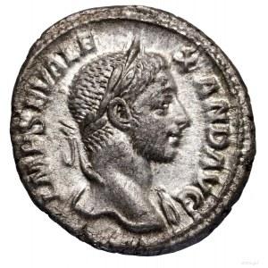 Denar, 228–231, Rzym; Aw: Głowa cesarza w wieńcu laurow...
