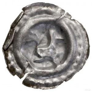Brakteat, koniec XIII w.; Kogut kroczący w prawo; Kop. ...
