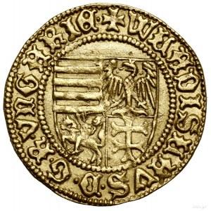 Goldgulden, bez daty (1443), Sybin (węg. Nagyszeben); A...