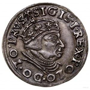Trojak, 1539, Gdańsk; popiersie króla w czepcu ikoroni...