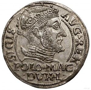 Grosz nastopę polską, 1548, Wilno; końcówki legend L /...