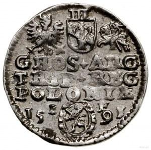 Trojak, 1591, Olkusz; herb Lewart w ozdobnej owalnej ta...