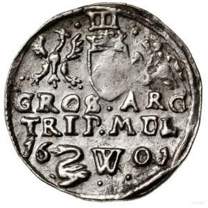 Trojak, 1601, Wilno; na rewersie data 16 - 01 rozdzielo...