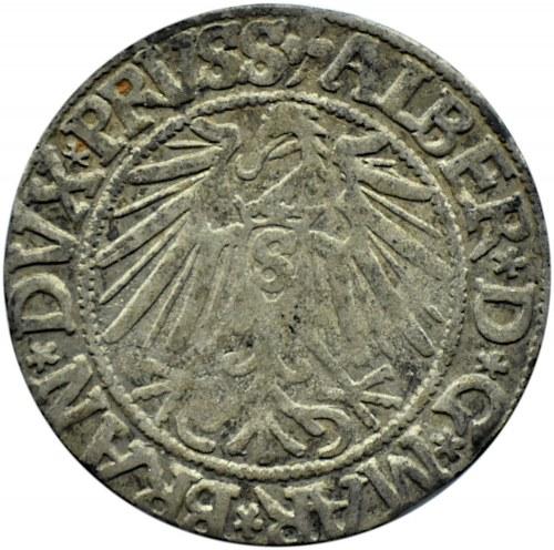 Prusy Książęce, Albrecht, grosz pruski 1543, Królewiec