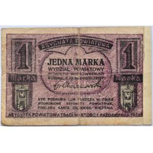 Gniezno i Witkowo, Wydział Powiatowy, 1 marka 1919