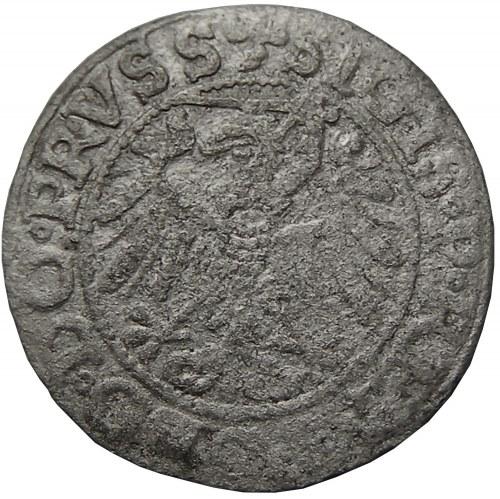 Zygmunt I Stary, szeląg 1539, Elblag